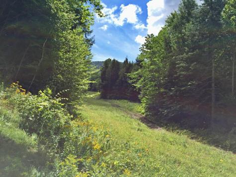 24 Bow Hill Road Burke VT 05832