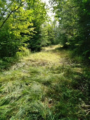 616 Stannard Mountain Road Stannard VT 05842