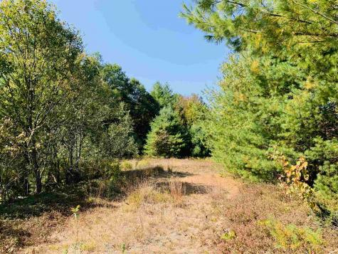 Lot 1.4 Welton Falls Road Alexandria NH 03222
