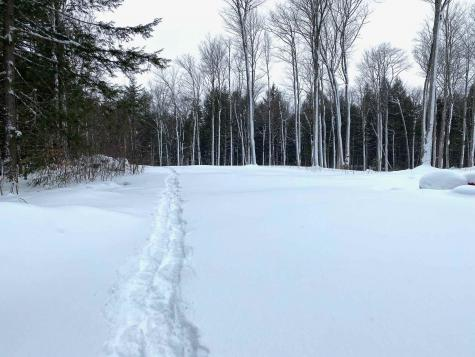 Lot Piper Hill Road Weston VT 05161