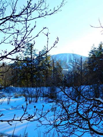 154 High Meadow Road Winhall VT 05340