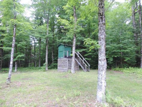298 Little Deer Drive Wheelock VT 05851