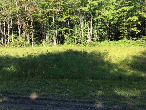 Lot 4 Deerfield Hills Road Morristown VT 05661