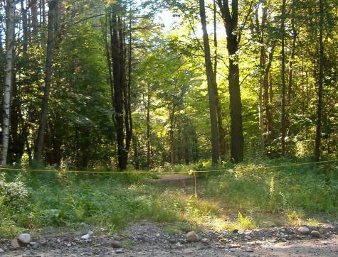 2 Meadow Road Ludlow VT 05149