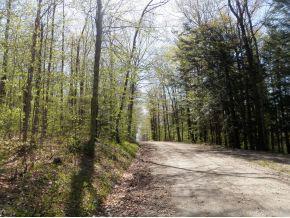 205 Arrau Road Andover VT 05143