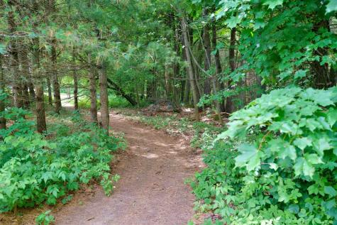 18 Maple Run Lane Stowe VT 05672