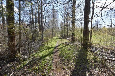 3537 Route 153 Pawlet VT 05775