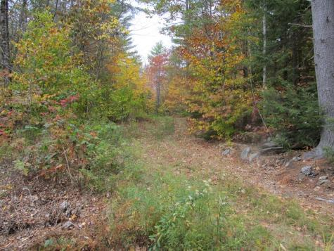 439 Dodge Hollow Road Lempster NH 03605