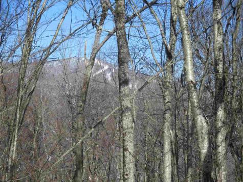 93 Sylvan Ridge Road Winhall VT 05340