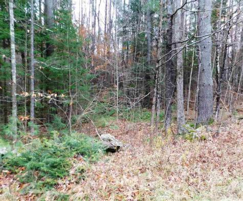 Lot 1 Middletown Londonderry VT 05148