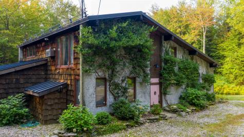 20 Little Brook Road Winhall VT 05340