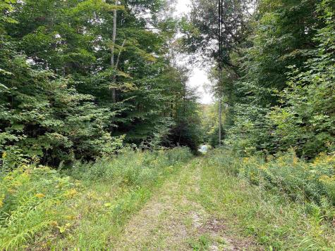 VT Route 100 Mount Holly VT 05730