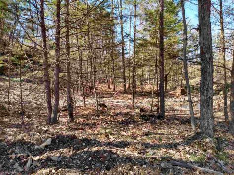 Lot 10 Private Chesterfield NH 03443