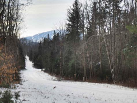 Lot #3 French Hollow Winhall VT 05340