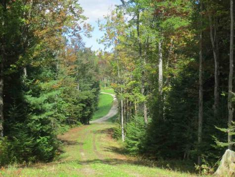 Lot #3 French Hollow Road Winhall VT 05340