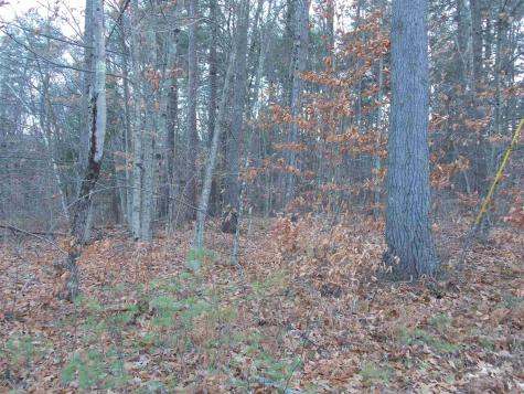 Pequawket- Lot 114.1 Drive Conway NH 03818