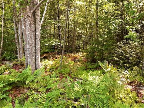 Lot 20 Beaver Path Thornton NH 03223