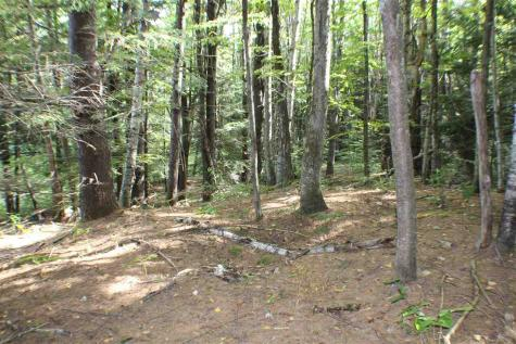Lot 2 Jillie Lane Chester VT 05143