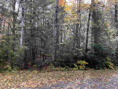 38 Winding Wood Springfield NH 03287