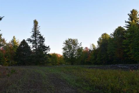Lot 2A and 2B Cross Road Wolcott VT 05680