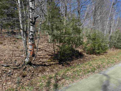 4A Deerwood Hill Road Londonderry VT 05155