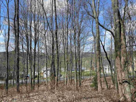 Lincoln Street Woodstock VT 05091