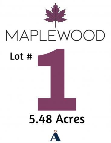 Lot 1 Maplewood Drive Candia NH 03034