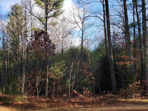 Lot 28 Mountain Shadows Drive Tuftonboro NH 03816