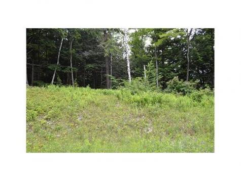 Lot 44 Partridge Road Ludlow VT 05149