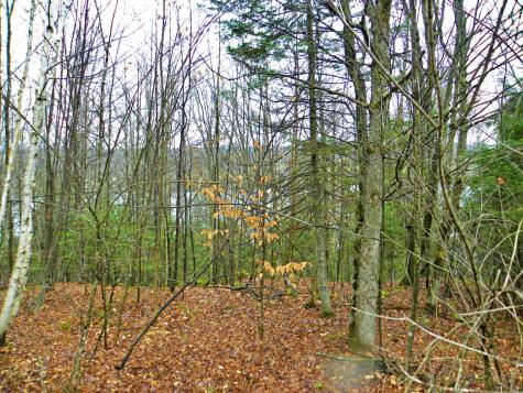 365 Blueberry Point Lane Westmore VT 05822