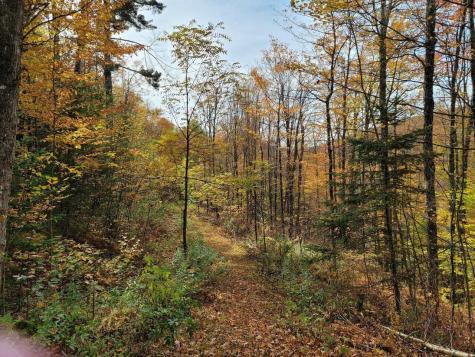4156 North Hollow Road Granville VT 05747