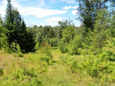 670 Cemetery Ridge Greensboro VT 05841