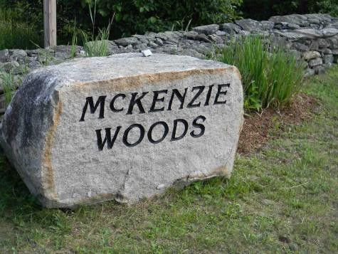 10 McKenzie Woods Franconia NH 03580