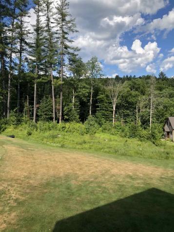 33 Vacation Lodges Londonderry VT 05148