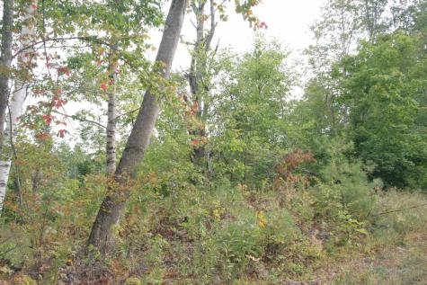 Lot 9 on Hurlbut Hill Lane Waterford VT 05819