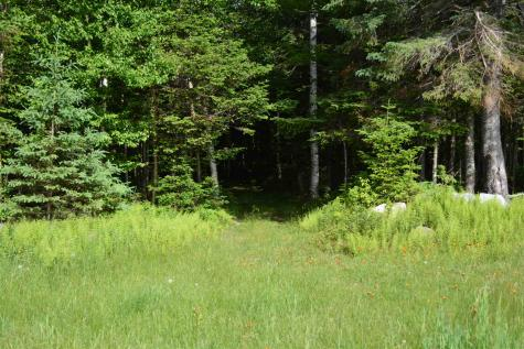 Lot 18 Missing Link Colebrook NH 03576