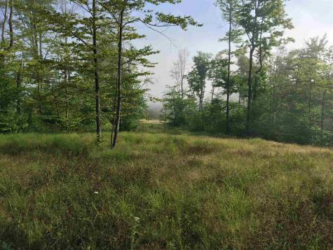 Lot 3 Deerfield Hills Morristown VT 05661