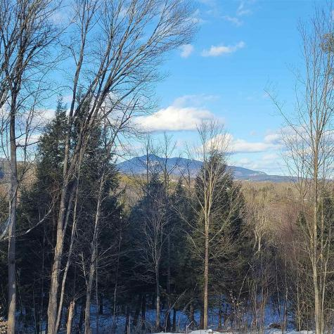 559 Davidson Hill Road Chester VT 05143