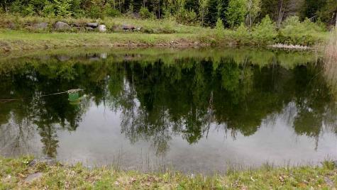 3138 Duck Pond Road Barton VT 05822