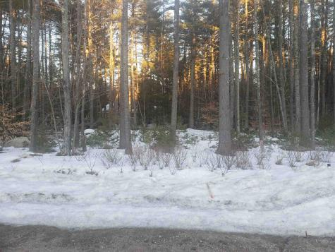38 Poliquin Drive Conway NH 03818