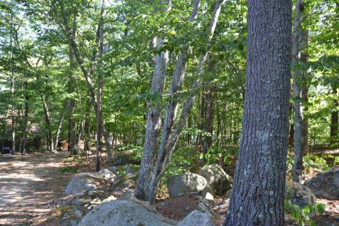 Lot 47 Owls Head Point Road New Durham NH 03855