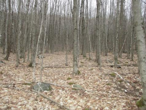 Lot 2/AKA 6 Levesque Road Hyde Park VT 05655