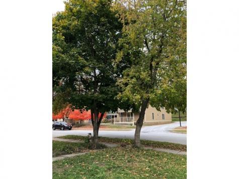 45 Pine Street Rutland VT 05701