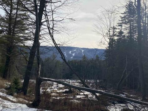 Lot 4 Mountain Lake Road Londonderry VT 05148