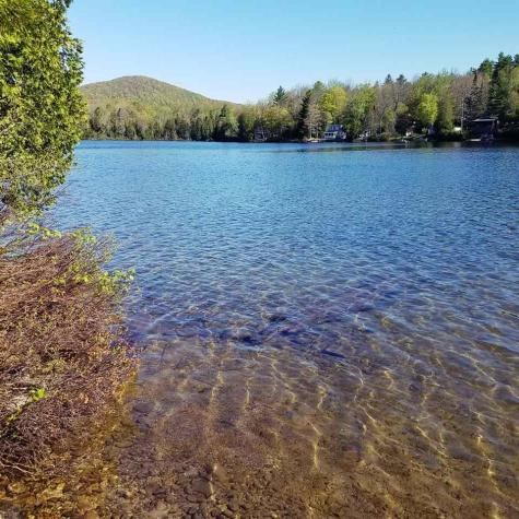411 Martins Pond Peacham VT 05046