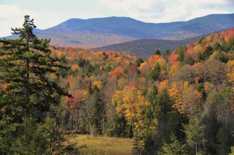 513 Shepard Hill Trail Worcester VT 05682