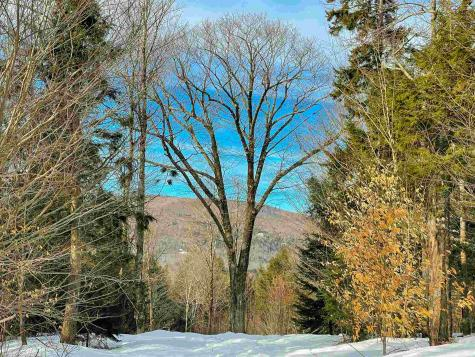 1 Turtle Hill Road Ludlow VT 05149