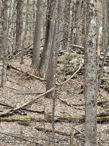37 Warner Creek Road Underhill VT 05489