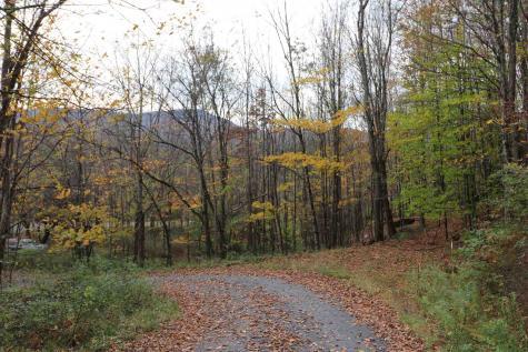 915 Freeman Hill Road Moretown VT 05660