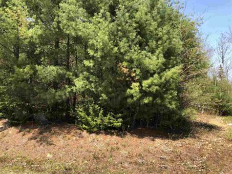 Lot 23 Adams Way Middleton NH 03887
